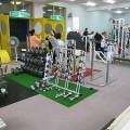 トレーニング&フィットネス